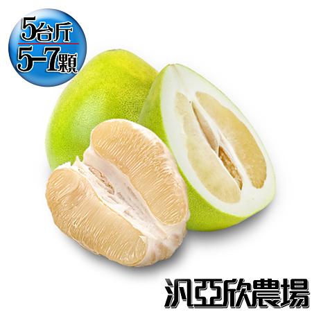 汎亞欣農場 產銷履歷40年老欉麻豆文旦5台斤(5-7顆入)