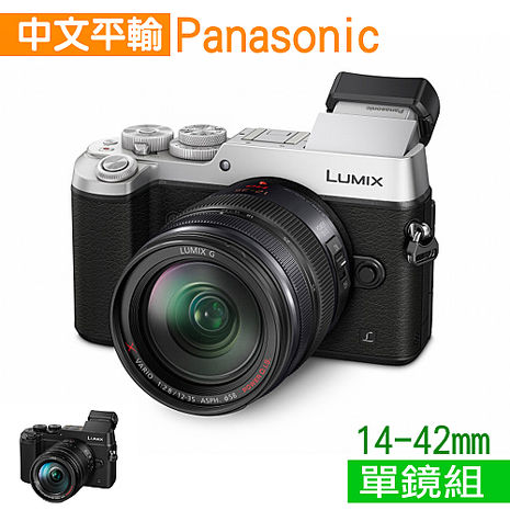 Panasonic Lumix GX8 +14-42mmII 4K 超高清攝錄機*(中文平輸)-送SD64G-C10+副電+單眼包等好禮