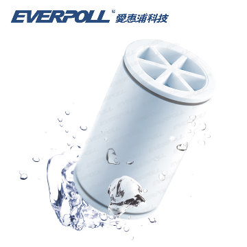 【EVERPOLL 愛惠浦科技】微分子潔膚活水器專用濾芯 (MKC)