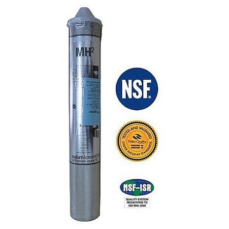 EVERPURE 美國原裝進口濾心 MH2 全新包裝