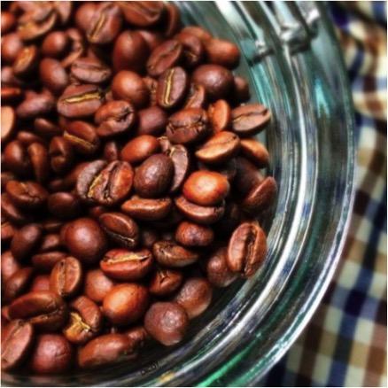 Dicot咖啡/薩爾瓦多 LAS RANAS / 240公克