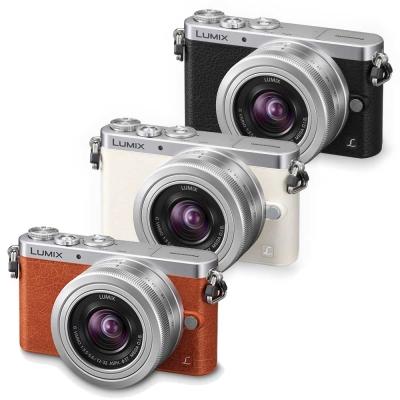 Panasonic GM1+12-32mm變焦鏡組(公司貨)