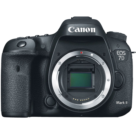Canon EOS 7DII 單機身(公司貨)