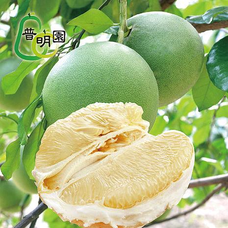 《普明園》台南麻豆40年大白柚5台斤(約2-3顆/箱)-預購
