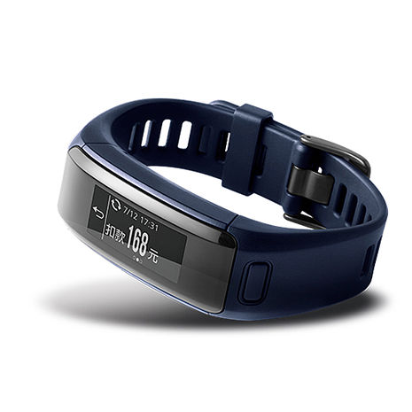 【GARMIN】vivosmart HR iPass (一卡通) 心率智慧手環 - 都市藍