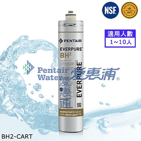 EVERPURE 愛惠浦原廠公司貨 BH2濾心