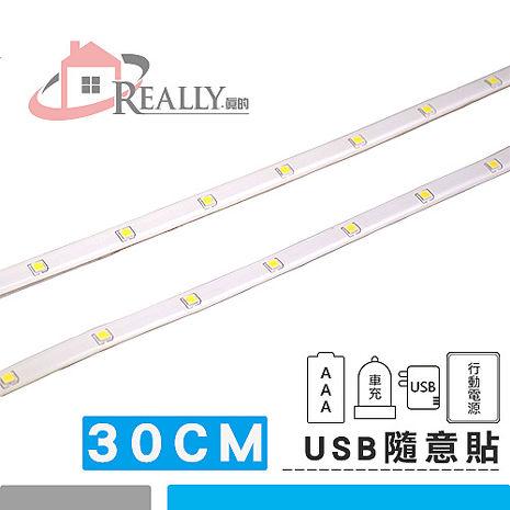 【軍威光電 Ez-Light】真的好貼-LED 隨意貼燈條(一組兩條)