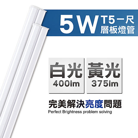 【威剛 ADATA】5W T5 1呎 LED 層板支架燈(2入)白光