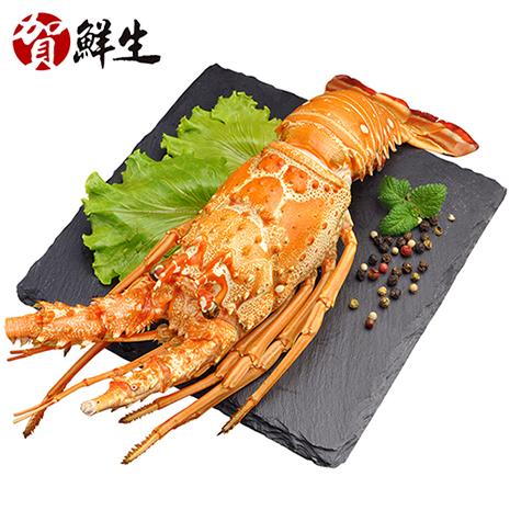 【賀鮮生】熟凍鮮龍蝦3隻(400g/全隻)