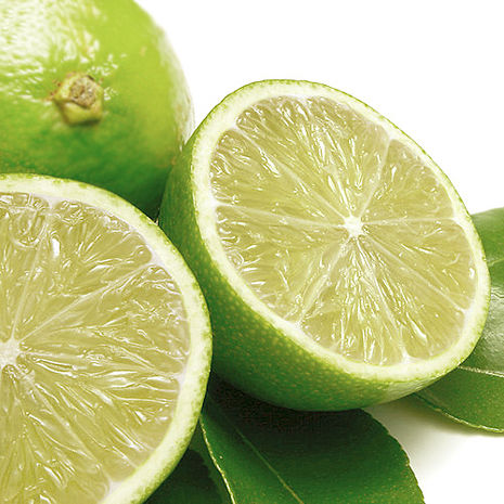 預購-【果之家】新鮮綠皮檸檬5台斤2箱