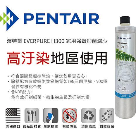 【濱特爾】EVERPURE H-300 家用強效抑垢型濾心 台灣總代理公司貨