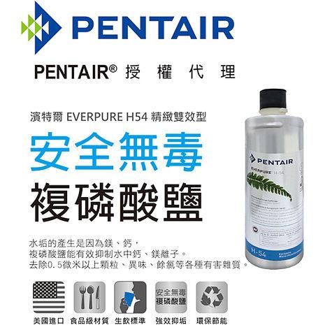 【濱特爾】EVERPURE H-54 精緻雙效型濾心 台灣總代理公司貨