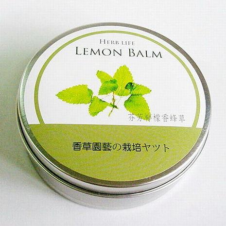 【Light+Bio】香草栽培罐Ⅱ- 檸檬香蜂草