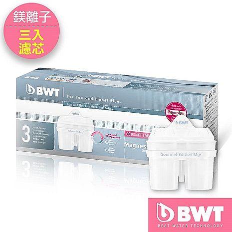 BWT 德國倍世 Mg2+鎂離子長效型濾芯 三入