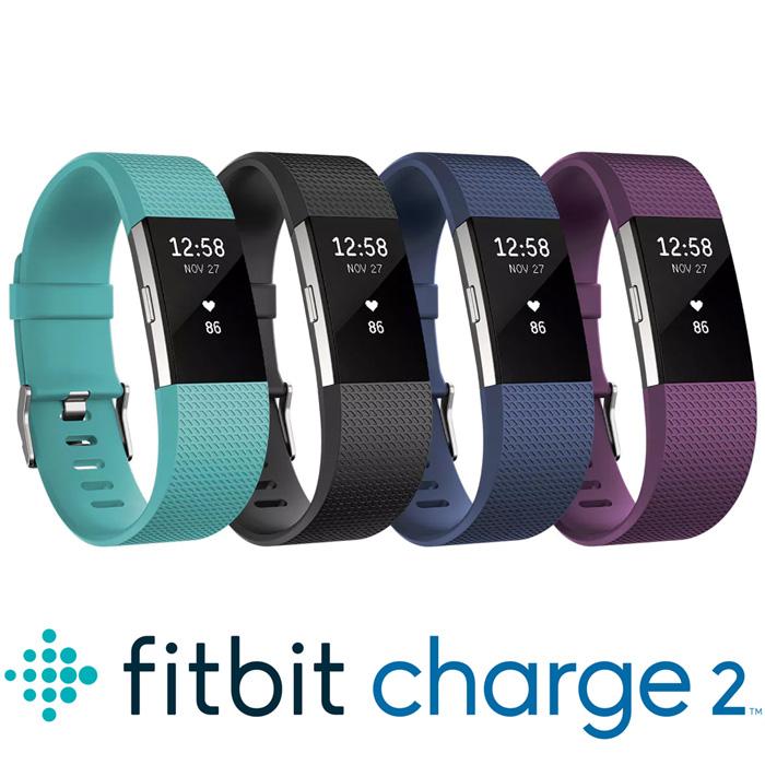Fitbit Charge 2 無線心率監測專業運動手環/ Fitbit Charge2湖水綠-S