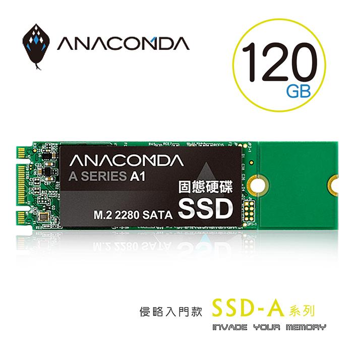 ANACOMDA巨蟒 侵略入門款 A1 M.2 120GB 固態硬碟