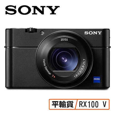 SONY索尼 RX100 V RX100M5 相機 DSC-RX100M5 平行輸入 店家保固一年