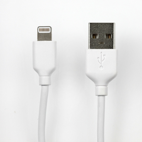 【Apple認證】Lightning 8pin 傳輸充電線 (120cm)