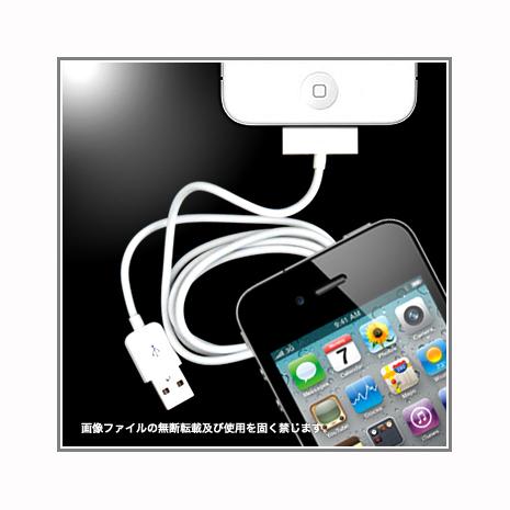 iPhone/iPad通用USB高速充電 30 pin 傳輸線