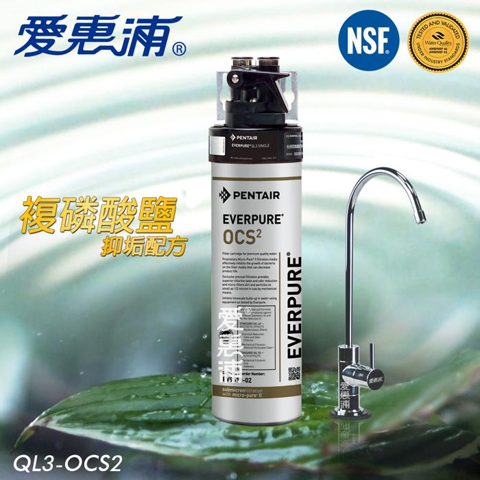 【愛惠浦EVERPURE】家用型精緻抑垢淨水器(QL3-OCS2)