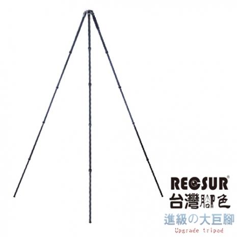 RECSUR 銳攝 RS-282C 台腳16號 RS282C 282cm 公分 碳纖維 附背袋