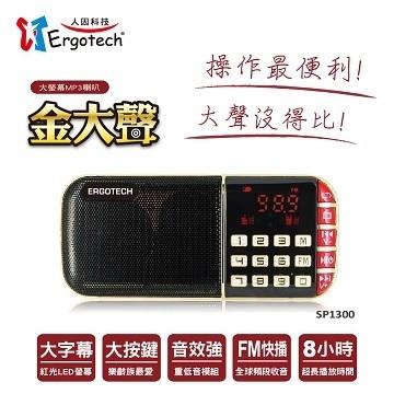 人因科技 金大聲 大螢幕多媒體插卡式喇叭 SP1300R