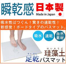 ~ ~Fujiwara 珪藻土 素面款 足乾浴室腳踏地墊^(小^)
