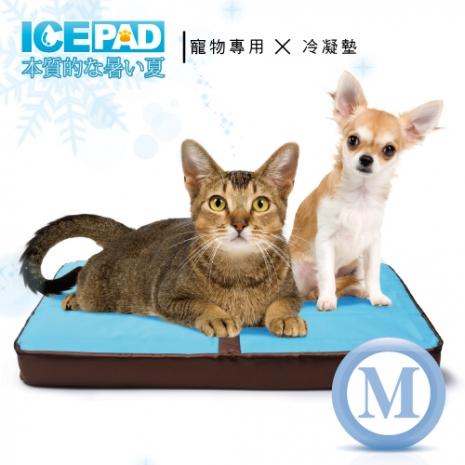 【ICE PAD】寵物專用~清涼冷凝記憶墊-M中型(app限定)