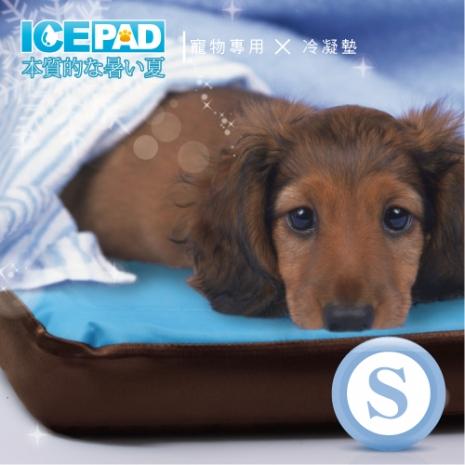 【ICE PAD】寵物專用~清涼冷凝記憶墊-S小型(app限定)