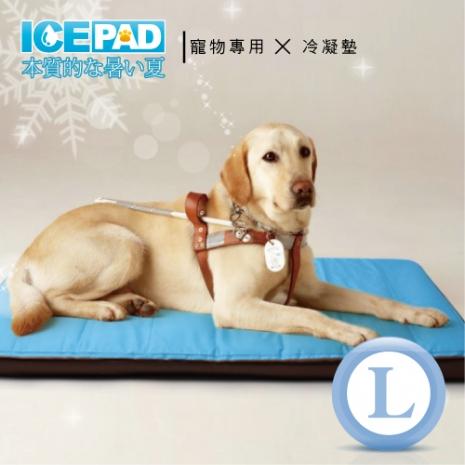 【ICE PAD】寵物專用~清涼冷凝記憶墊-L大型(app限定)
