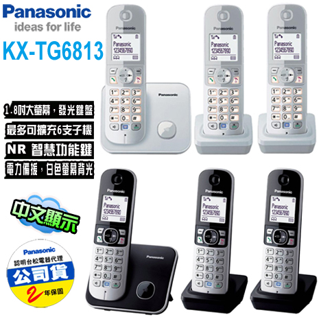 Panasonic國際牌 DECT數位無線電話(KX-TG6813)銀/黑色*送裸裝拭鏡布黑色