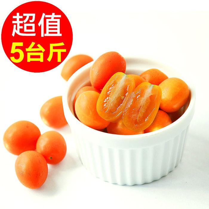 預購【人字山】美濃橙蜜香小番茄 1箱 (5台斤/3公斤)(活動)