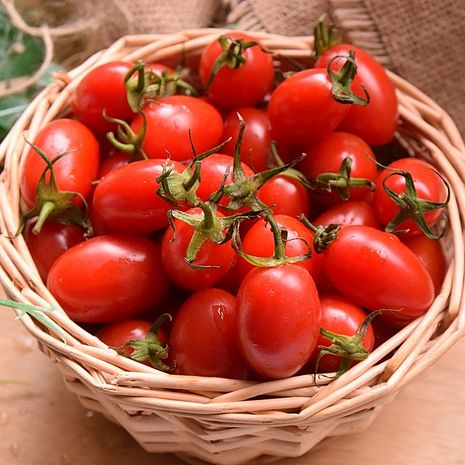 《饗果樂N》玉女小番茄(3台斤/箱)-預購-戶外.婦幼.食品保健-myfone購物