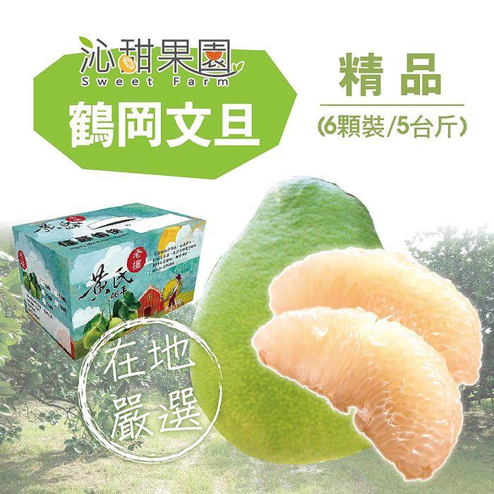 預購《沁甜果園SSN》花蓮鶴岡精品文旦(6顆裝/5台斤)9/20-9/26出貨