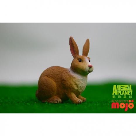 任選-【MOJO FUN 動物模型】動物星球頻道獨家授權 - 白褐色小兔