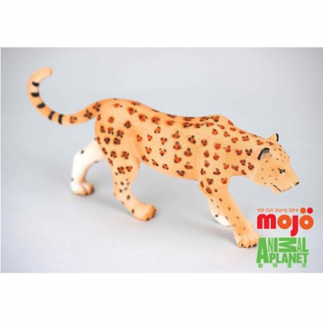 任選-【MOJO FUN 動物模型】動物星球頻道獨家授權 - 花豹