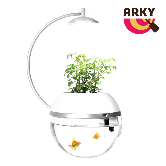 ARKY 香草與魚Herb & Fish 2016