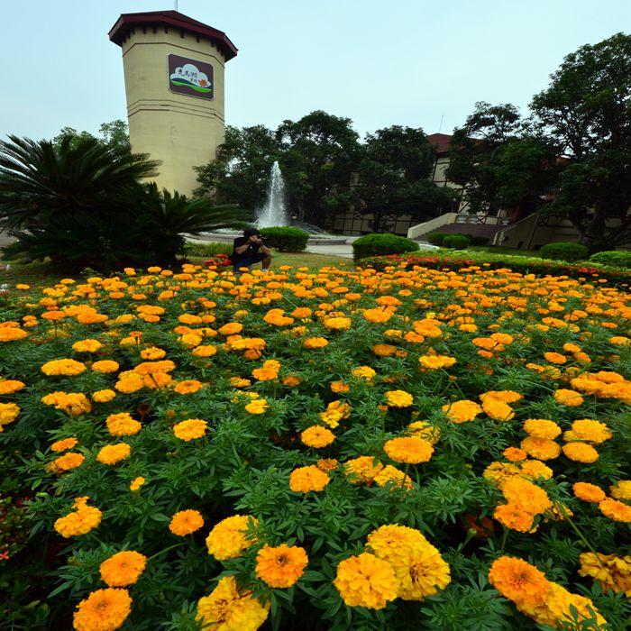 [台南]走馬瀨農場-豐富雙人農莊住宿二日遊