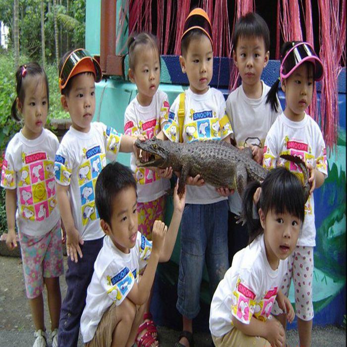 [屏東]不一樣鱷魚生態休閒農場-精緻單人農業體驗一日遊