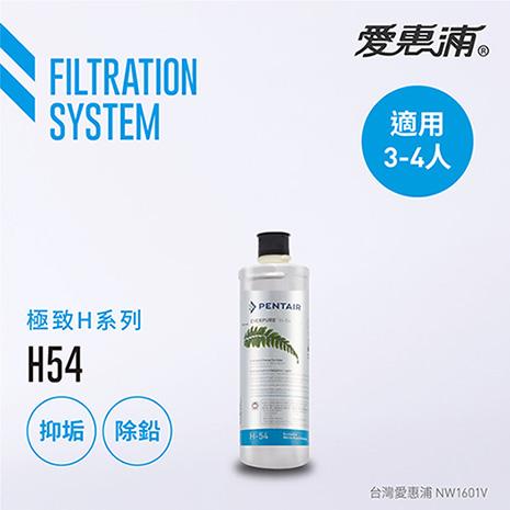 【愛惠浦公司貨】EVERPURE H54淨水濾芯(H54 CART)